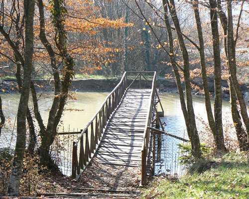 A wooden bridge at the lake.