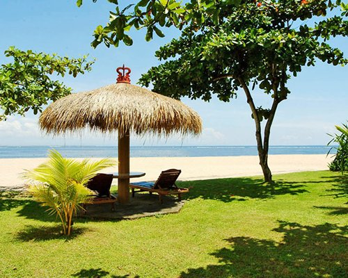A view of chaise lounge chairs with a thatched sunshade on a lawn facing the beach.