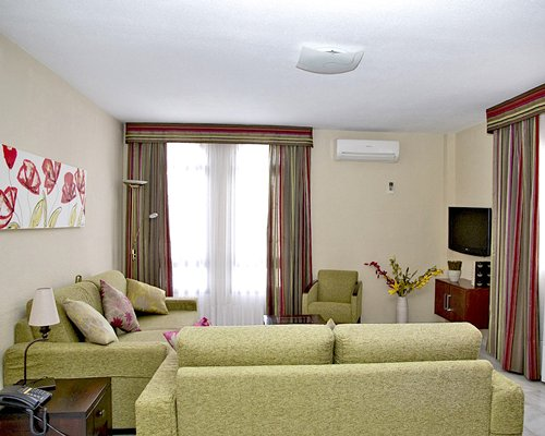 A well furnished living room with two double pull out sofas and a television.
