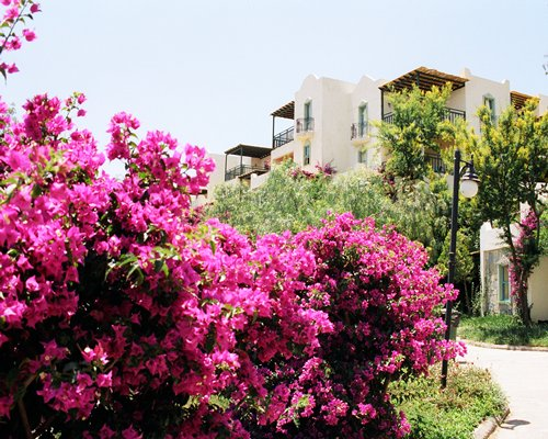 A scenic exterior view of the Club Dedeman Bodrum Evleri resort condos.