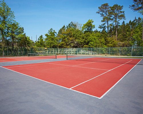 An outdoor tennis court alongside the wooded area.