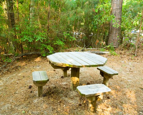 Patio furniture surrounded by a wooded area.