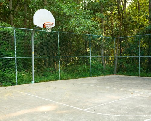 An outdoor basketball court surrounded by a wooded area.