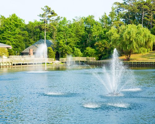 A view of the waterfront with fountains surrounded by a wooded area.