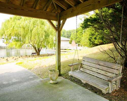 Scenic picnic area with covered swinging bench.