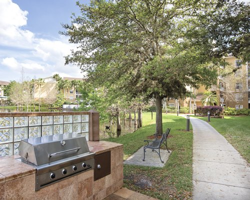 An outdoor patio with trees and a barbecue grill.