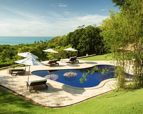 An outdoor swimming pool with chaise lounge chairs and thatched surrounded by trees.