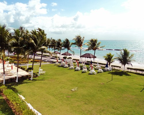 A view of the ocean from a lawn with coconut trees.