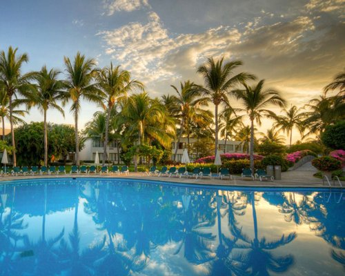 Large outdoor swimming pool with chaise lounge chairs and palm trees.