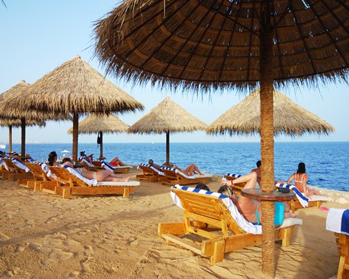 Beach view of chaise lounge chairs and thatched sunshades facing the sea.