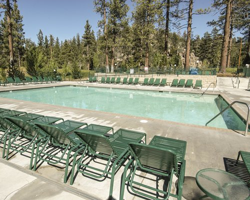 An outdoor swimming pool with chaise lounge chairs surrounded by a wooded area.