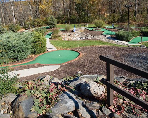 A putt putt golf course surrounded by woods.