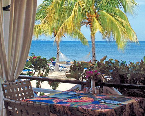 View of the beach with a hammock palm trees and chaise lounge chairs from the patio with dining.