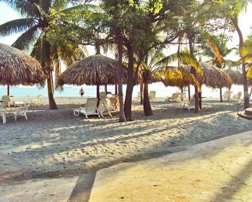 A view of lounge chairs with thatched sunshade surrounded by trees.