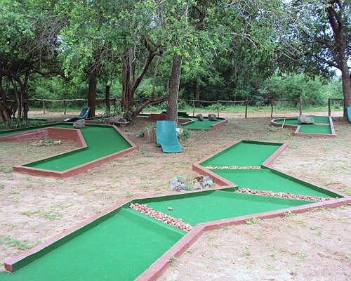 A well maintained putt putt course surrounded by trees.