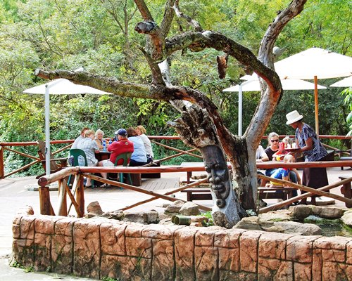A group of people in the outdoor restaurant surrounded by wooded area.