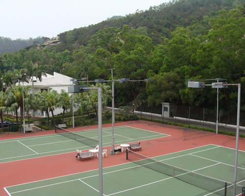 Outdoor tennis courts surrounded by wooded area.