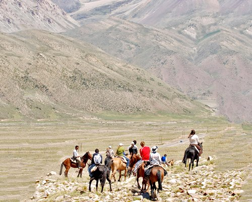 Group of people riding the horses.