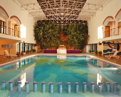 A large indoor swimming pool with chaise lounge chairs and potted plants.