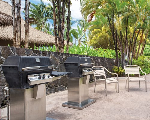 Scenic outdoor picnic area with two barbecue grills.