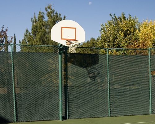 An outdoor basketball court surrounded by trees.