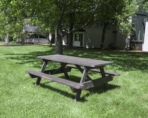 An outdoor recreational area with a picnic table alongside trees.