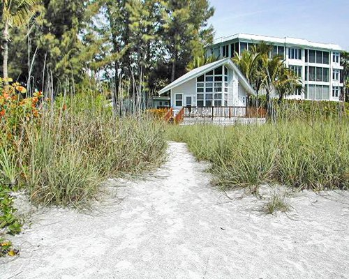 An exterior view of the Caribe Beach Resort with the trees.