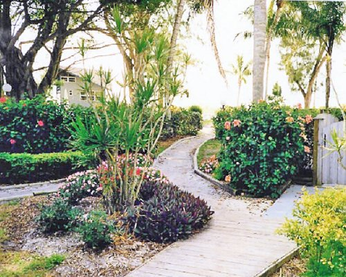 A scenic pathway.