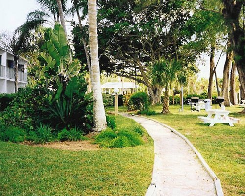 A pathway leading to the resort alongside the picnic area.