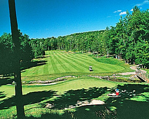 A well maintained golf course surrounded by the wooded area.