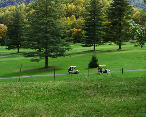 A well maintained golf course surrounded by trees.