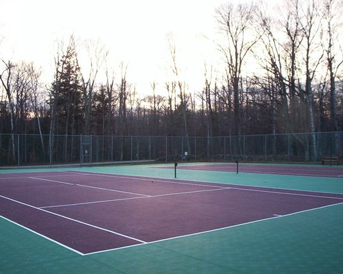 View of two outdoor tennis courts surrounded by trees.