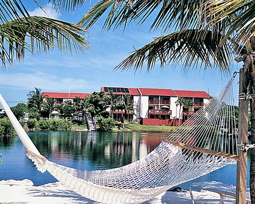 View of Florida Bay Club with a hammock and palm trees alongside the ocean.