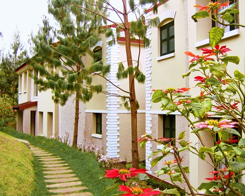 A scenic pathway leading to the resort units.