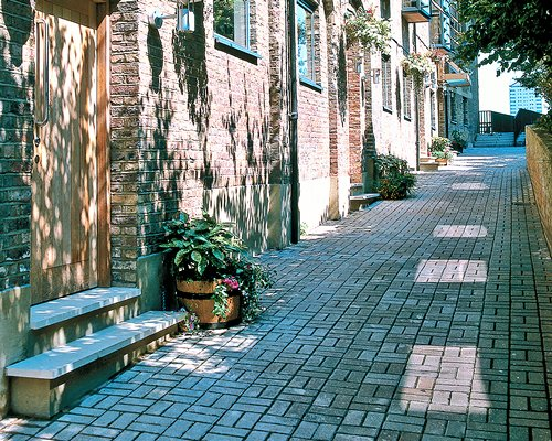 A paved pathway alongside multiple units.