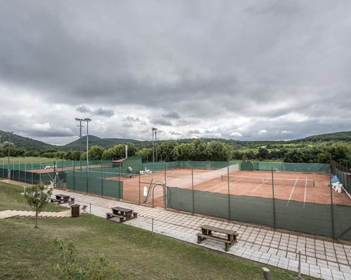 An outdoor recreation area with tennis courts surrounded by wooded area.