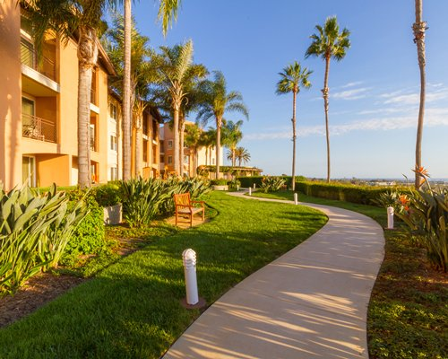 Exterior view of Grand Pacific Palisades Resort with palm trees.