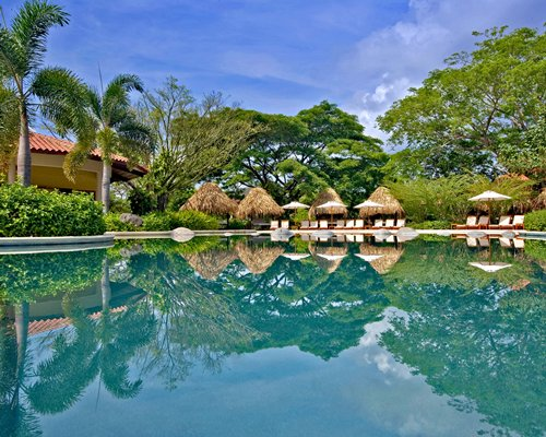 An outdoor swimming pool with thatched sunshades and chaise lounge chairs alongside the resort.