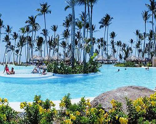 A large outdoor swimming pool with hot tub surrounded by coconut trees.