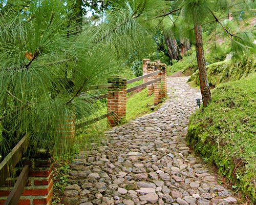A pathway with wooden fence.