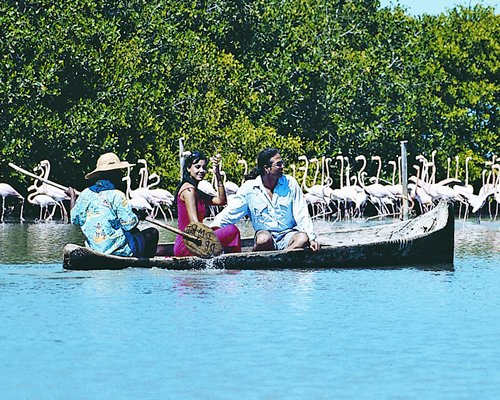 A couple enjoying the boating.