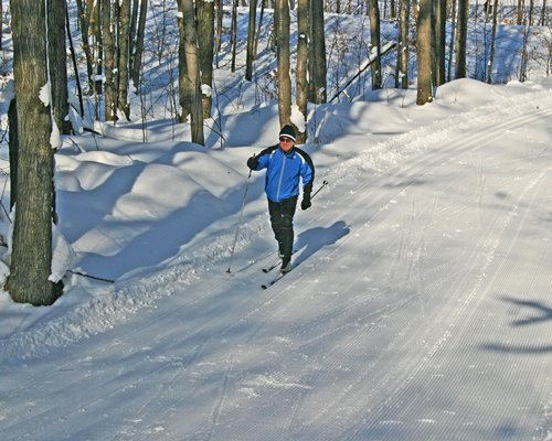 A man playing cross country skiing surrounded by woods.