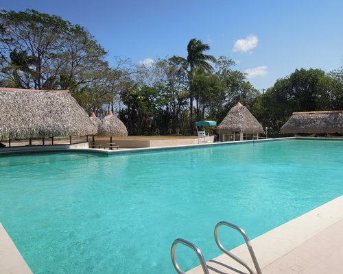 Outdoor swimming pool with thatched covered sunshades.