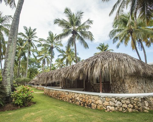 An exterior view of the resort with thatched sunshades alongside coconut trees.
