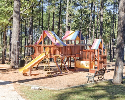 View of kids playscape at WorldMark Pinetop surrounded by pine trees.