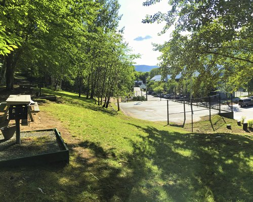 Picnic area and outdoor basketball court surrounded by wooded area.