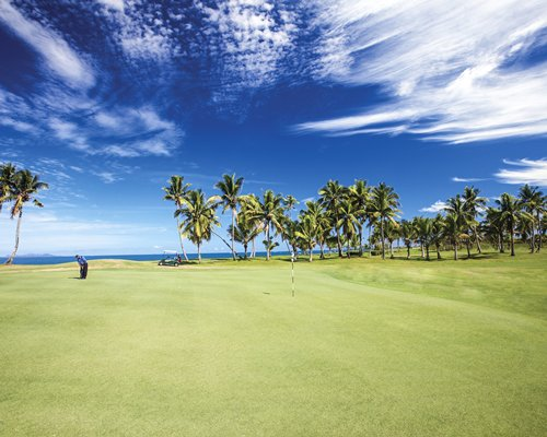 A golf course with palm trees.
