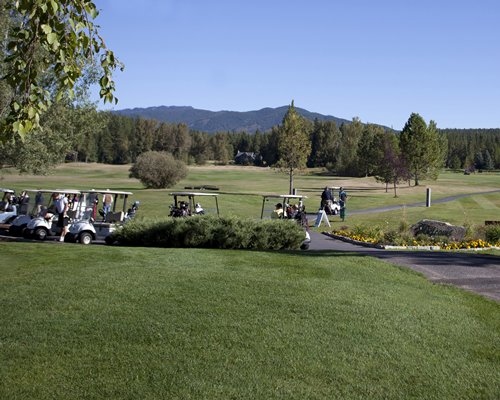 A well maintained golf course with golf carts surrounded by trees.