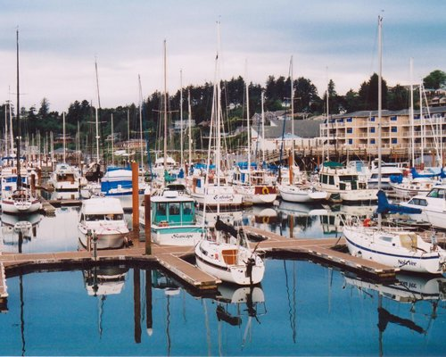 A view of marinas on the water alongside multi story units.