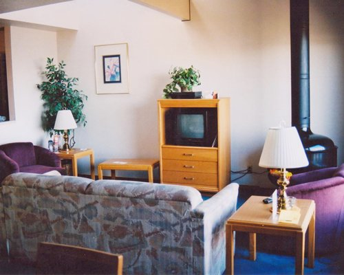 A well furnished living room with a television and pull out sofa.